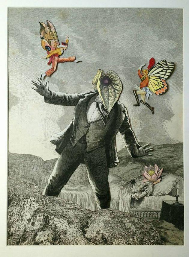 Butterflymen