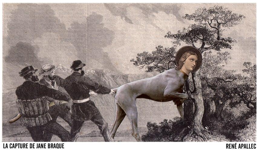 La Capture de Jane Braque