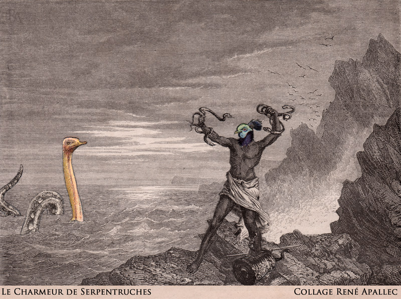 Le Charmeur de Serpentruches