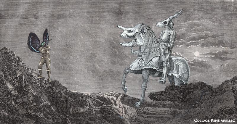 Le Colibri n'a pas peur d'affronter le Cervidé de la Mort